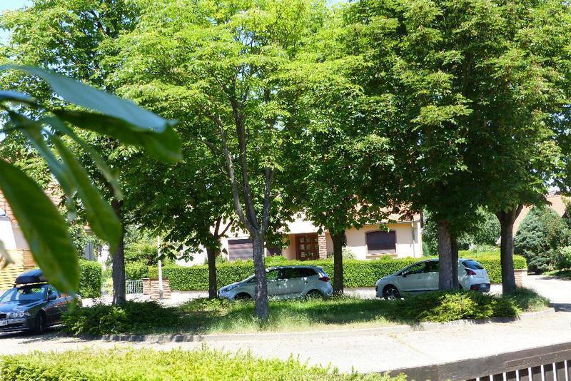 Maison lingolsheim immofavoris for Piscine lingolsheim